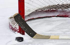 net_stick_puck.jpg